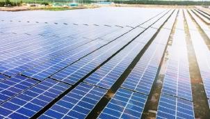 """Dự án năng lượng tái tạo của Bamboo Capital hút vốn """"khủng"""""""
