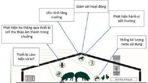 RE-THINKING - Đưa AI vào ngành chăn nuôi lợn tại Việt Nam
