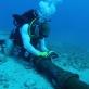 Cáp quang biển AAG sẽ được sửa xong ngày 11/9